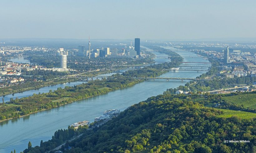 Adaption of the Danube Island to climate change