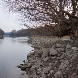 Bank stone placement in the river estuary (Photo: Zuna-Kratky)