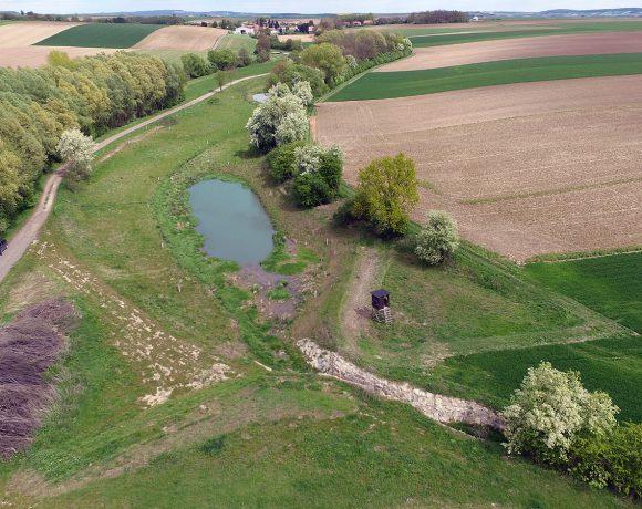 Ringendorfer Ditch